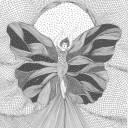 Mots d'elles de papillon